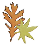 leaves icon.jpg